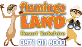 Daily Express Flamingo Land Vouchers