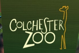 Discount Tickets For Colchester Zoo