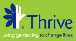 Thrive Coupon Code 15