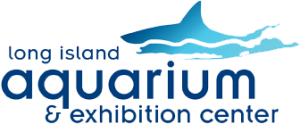 Long Island Aquarium Promo Code