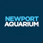 Newport Aquarium Promo Code 50% Off