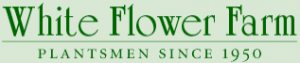 White Flower Farm 20% Off Coupon